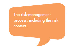 The risk-management process, including the risk context.