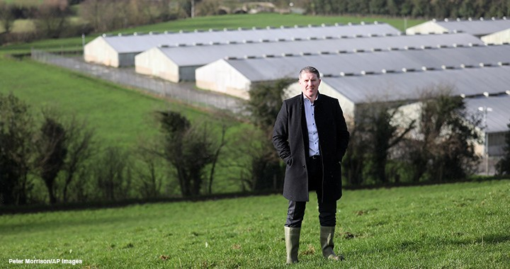 Micheál Briody, FCMA, CGMA, the CEO of Silver Hill Foods