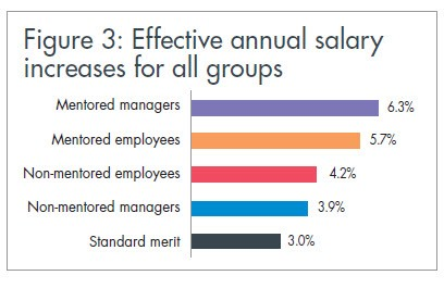 Effective annual salary increases for all groups