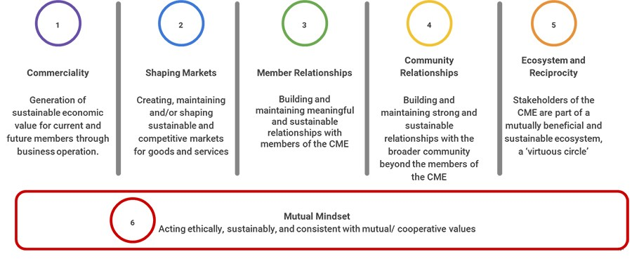 Dimensions of mutual value (developed by the project team)